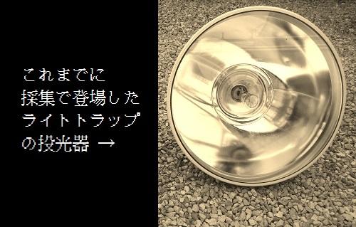 CA3I05581.jpg
