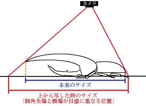 撮影図解.jpg