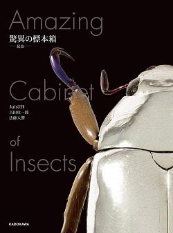 【Amazon.co.jp 限定】驚異の標本箱-昆虫- 超美麗昆虫ポストカード5枚付