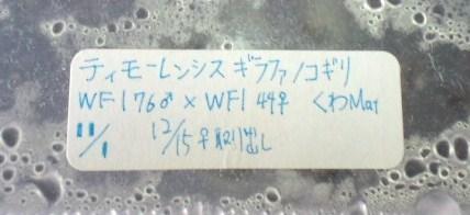 2010 01 23_0874.JPG