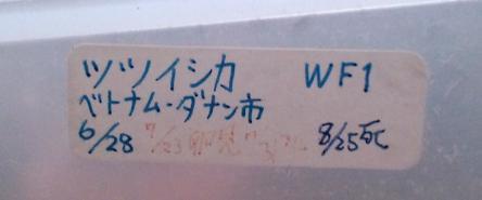 2010 11 03_1489.JPG