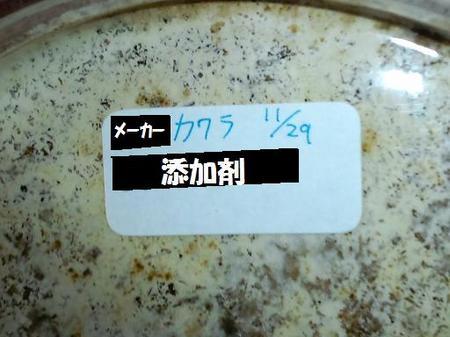 2010 11 29_1555.JPG