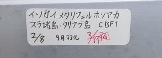 2011 06 19_1907.JPG